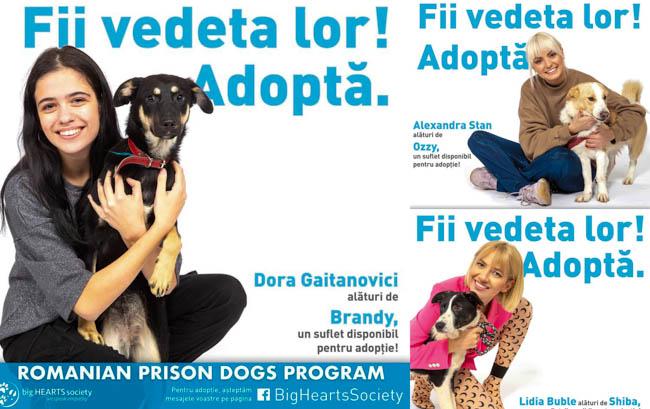 """Dora Gaitanovici, alături de Alexandra Stan, Lidia Buble și Irina Rimes în campania """"Fii vedeta lor, adoptă!"""""""