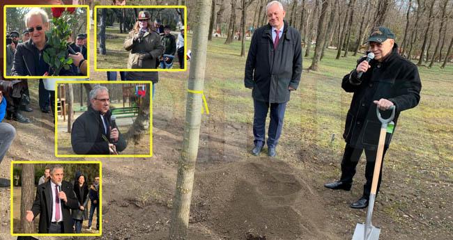 FOTO/VIDEO | Cinci buzoieni de marcă s-au întors acasă şi au plantat stejari în Crâng