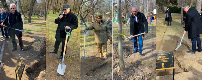 FOTO | Cinci personalități buzoiene și-au plantat propriii stejari în Parcul Crâng